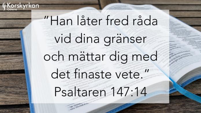 Min Bibelhälsning - Birgitta Söderberg